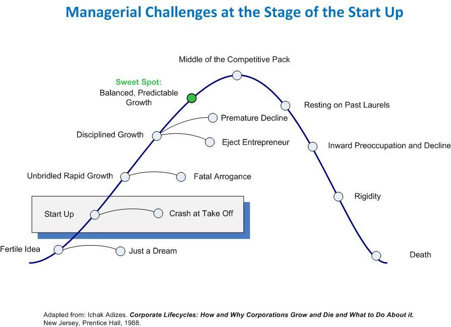 Start Up Stage of the Business Maturity Life Cycle