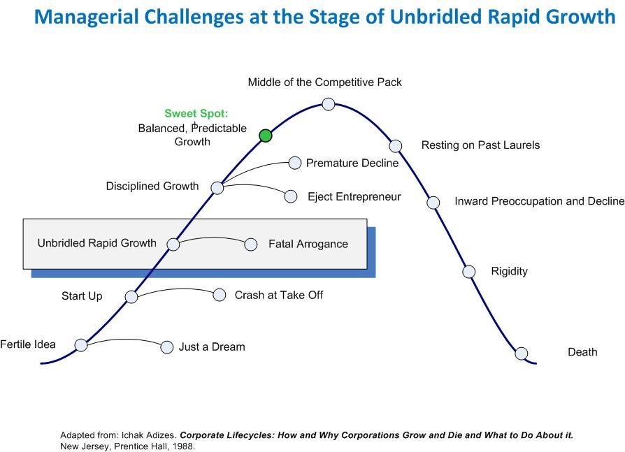 Unbridled Rapid Growth Stage